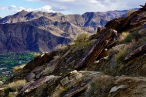 Spring Hikes in Palm Springs
